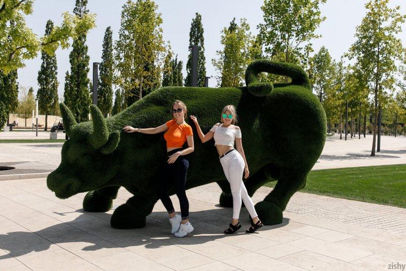 Русские подружки показали сиськи на улице - фото