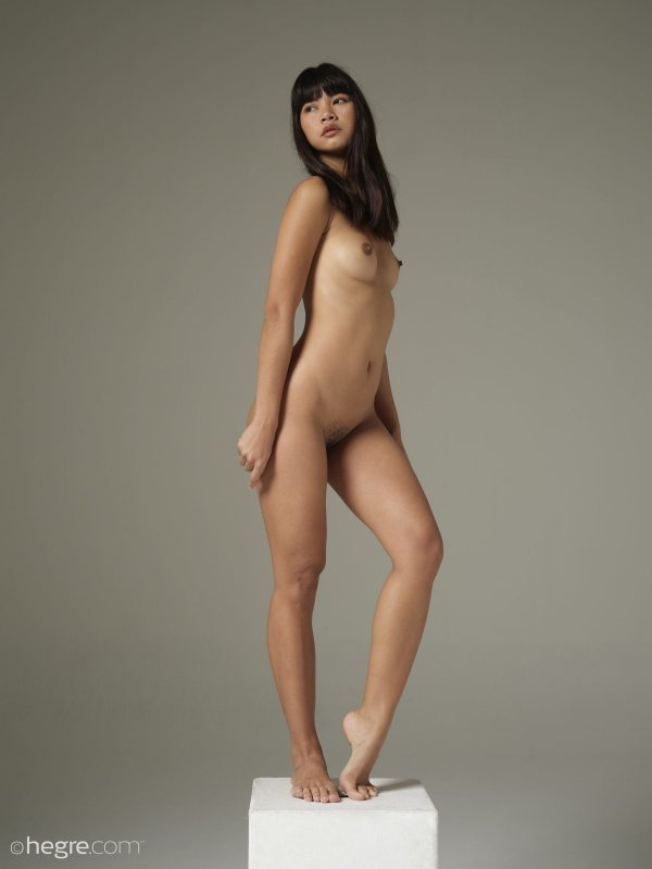 Голая тайка с мохнатым лобком - фото