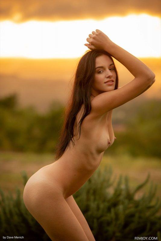 Молодая шатенка позирует на закате - фото