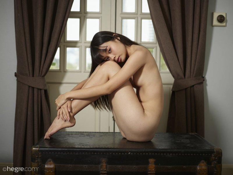 Хрупкая азиатка с маленькой грудью на сундуке - фото